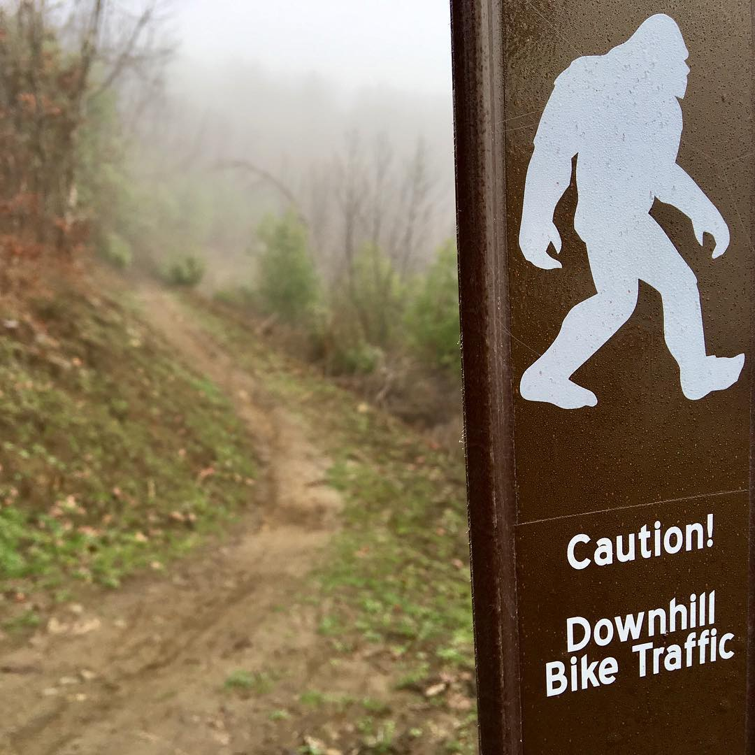Apparently this trail is popular with trail runners