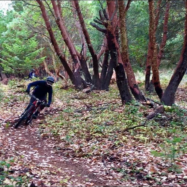 Trails are running good