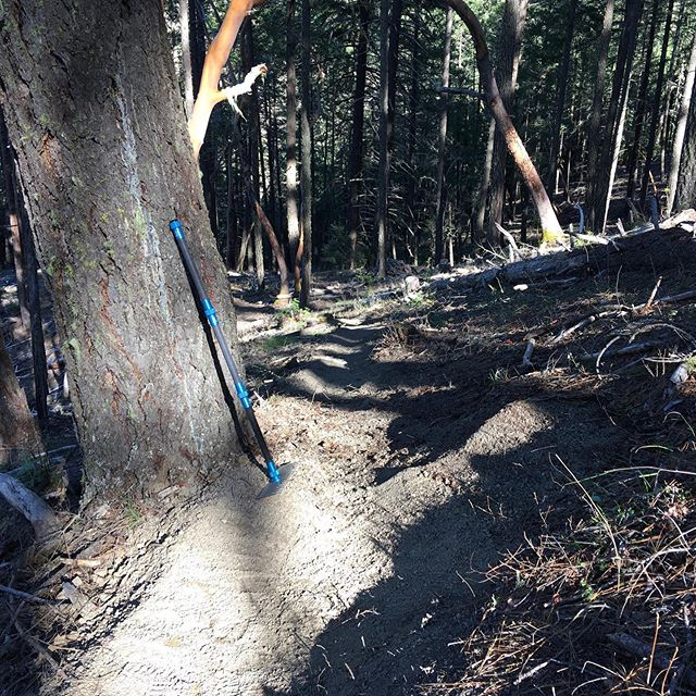 First I tested a cool tool @rvmbaorg got for me, then I tested the trail I tuned with said tool. Results were fast and wild or simply a resounding success